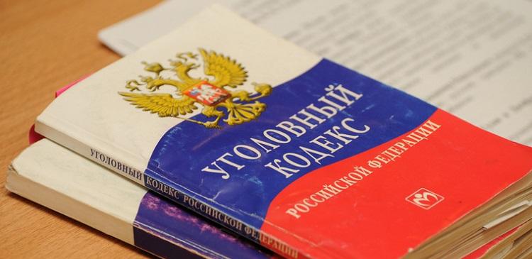уголовный кодекс россии скачать - фото 5