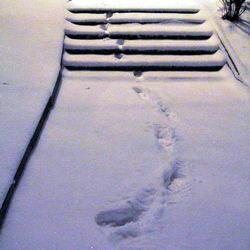 Задержать грабителя помогли следы на снегу