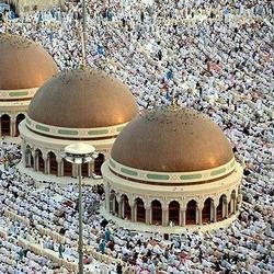 'Мусульмане