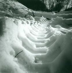 В Кузбассе нашли угнанный автомобиль по следу на снегу