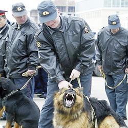В День города на улицы Кемерова выйдут 1000 милиционеров