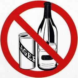 В День России на массовое празднование с бутылкой не пустят