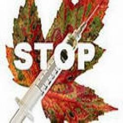 26 июня — Международный день борьбы с наркоманией