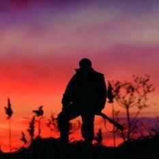 Год исправительных работ получил браконьер в Кузбассе
