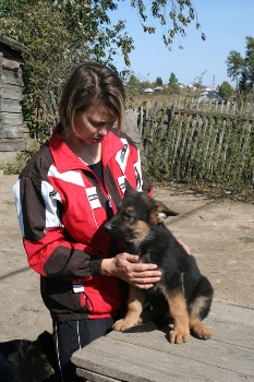 Уникальная собака-поисковик из Алтая найдёт кузбасского йети по запаху… его экскрементов