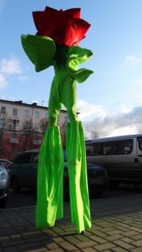 С Днём города кемеровчан поздравят живые скульптуры, клоуны и ходулисты