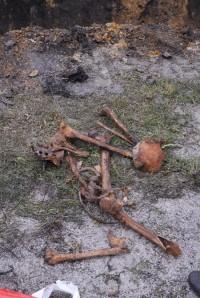 Беловские коммунальщики обнаружили старинное захоронение
