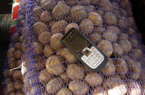 В киселевске грабители похитили мобильный и картофель