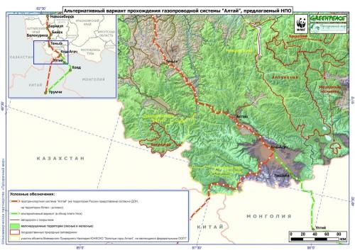 Алтайский ирбис нарушил планы «Газпрома»