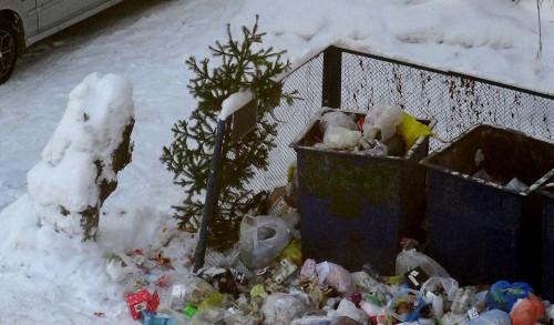 Кемеровчане начали выбрасывать новогодние ёлки