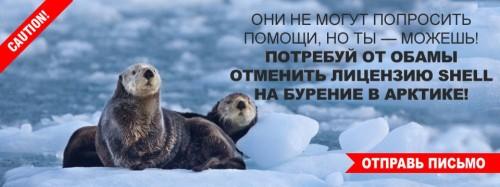 Жители планеты просят Барака Обаму отменить нефтедобычу в Арктике