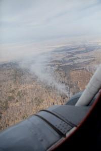 Огнеборцы потушили первые лесные пожары в Кузбассе