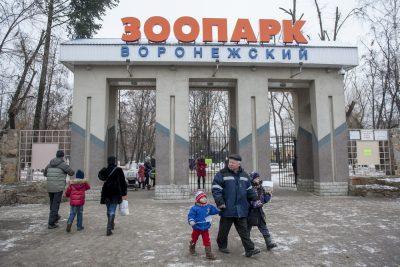 В зоопарке Воронежа усыпят всех птиц из-за эпидемии птичьего гриппа