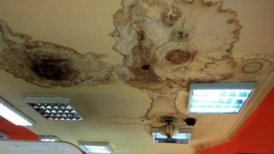 Кемеровский магазин «Кора» игнорирует опасное состояние потолка