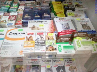 В 12 кузбасских ветеринарных аптеках незаконно продавали лекарства для животных