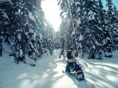 В Юргинском районе снегоход перевернулся после столкновения с деревом