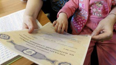 В России предложили заметить маткапитал на ежемесячные выплаты
