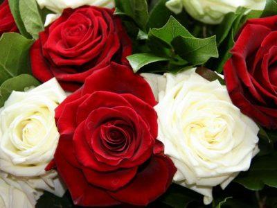 Рецидивист из Саратова украл 50 роз, чтобы подарить незнакомкам