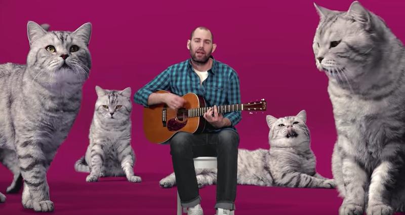 Семен Слепаков спел песню о«котозависимости»