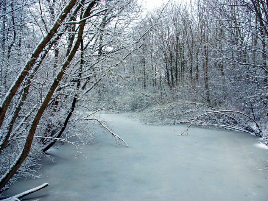 ВКузбассе пропал 10-летний парень: ребёнок мог провалиться под лёд