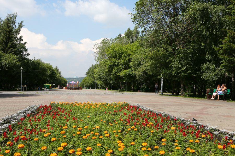 В ночь перед 9 мая в Кемерове высадят 2,5 тысячи цветов