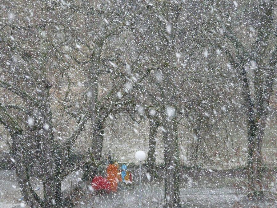 В Словакии 40 машин столкнулись из-за снежной бури и гололёда