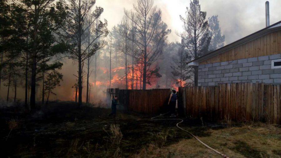Пострадавшим от пожаров в Сибири выплатят 143 млн рублей