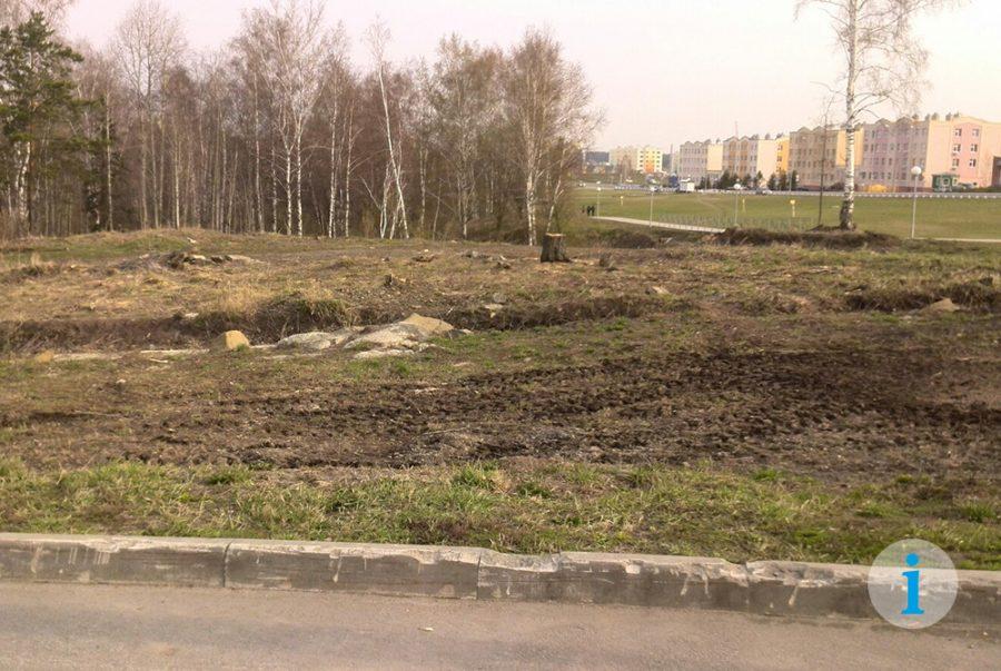 В кемеровской Лесной Поляне на месте рощи построят супермаркет