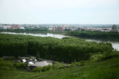 В Кемерове назвали новые сроки противоклещевой обработки Соснового бора