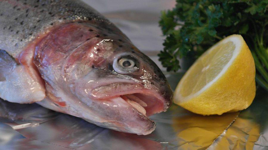 Рыбные ярмарки пройдут вНовокузнецке иКемерове