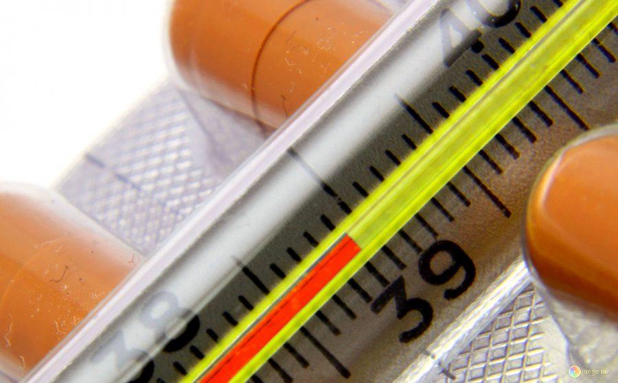 В Роспотребнадзоре рассказали о появлении в России нового вируса гриппа