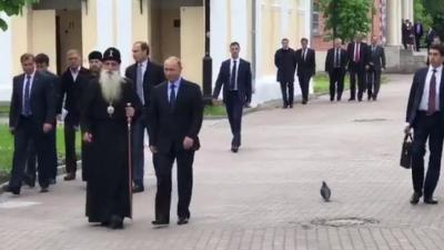 Владимир Путин поздоровался с голубем, видео опубликовали в Сети