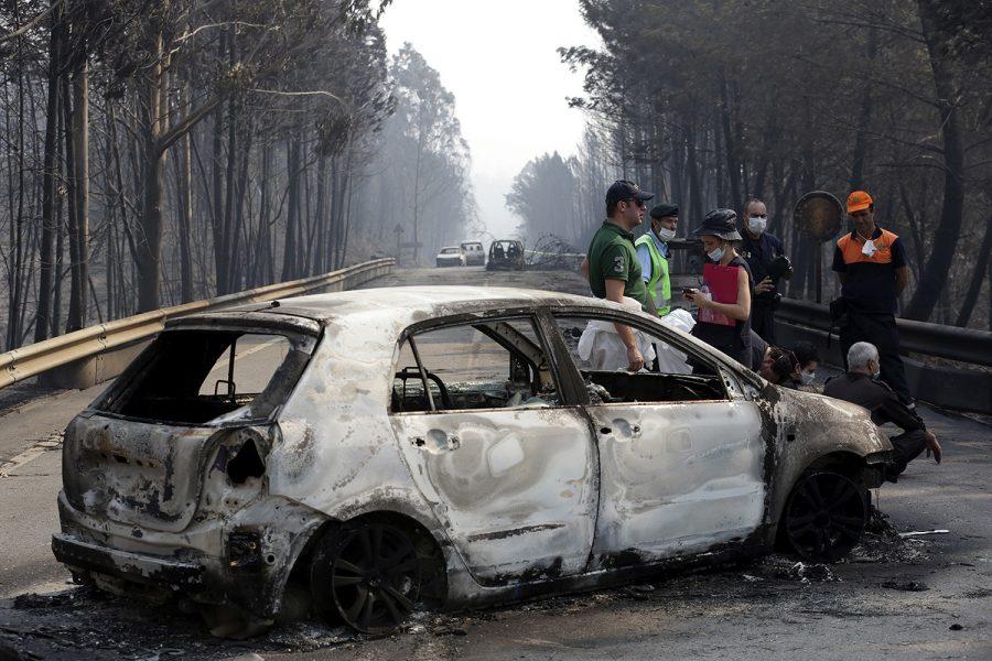 В Португалии 20 человек заживо сгорели в лесном пожаре