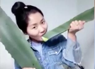 Блогер из Китая по ошибке съела ядовитое растение и попала в больницу