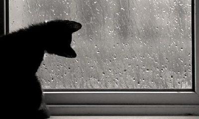 Кузбассовцев предупреждают об ухудшении погодных условий