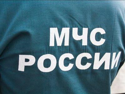В Новокузнецке из-за поджога горела иномарка
