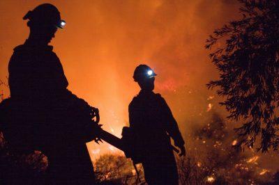 В Италии пожарные поджигали лес, чтобы получать премии