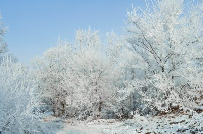 В Кузбассе ожидают холодную зиму