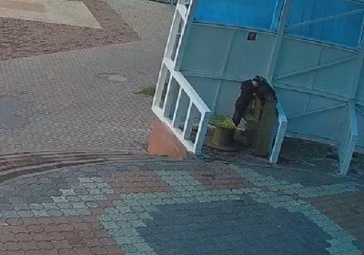 В Междуреченске вандалы разломали уличное пианино (видео)