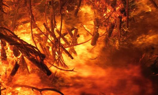 ВКузбассе вовремя пожара в личном доме умер мужчина