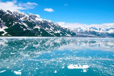 Останки неизвестного морского существа нашли на берегу Аляски