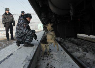 В Кузбассе грузовой поезд смертельно травмировал женщину