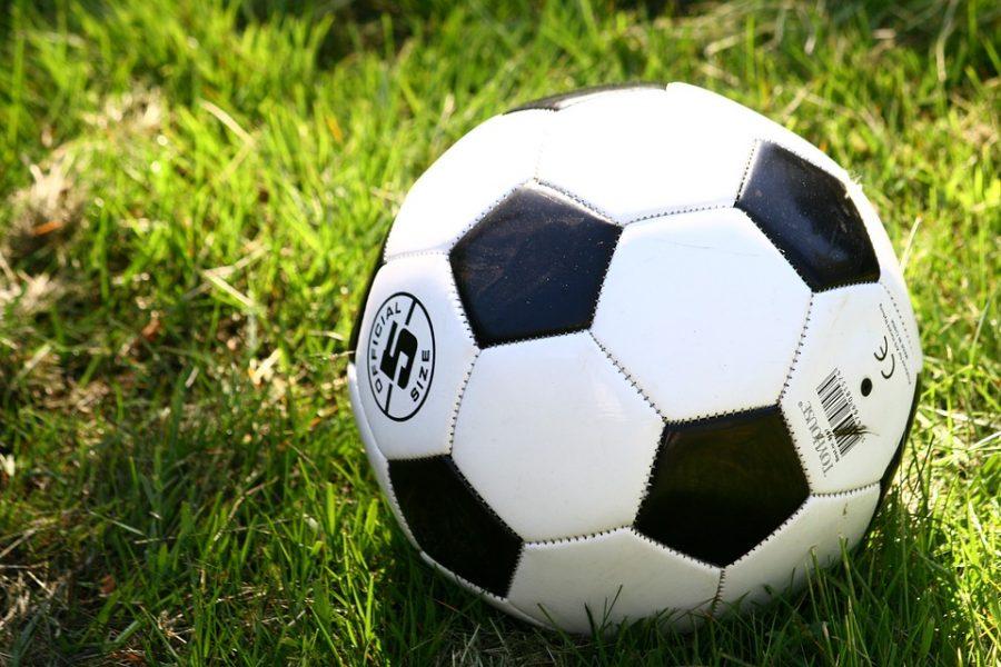 Кузбасские приставы выдворили из страны французского футболиста