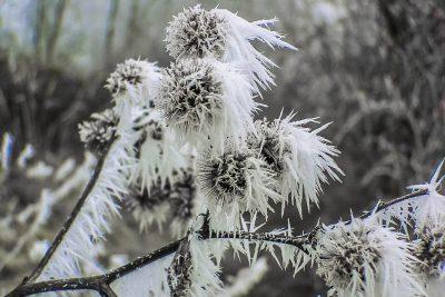 Кузбассовцев предупреждают о резком похолодании на севере области