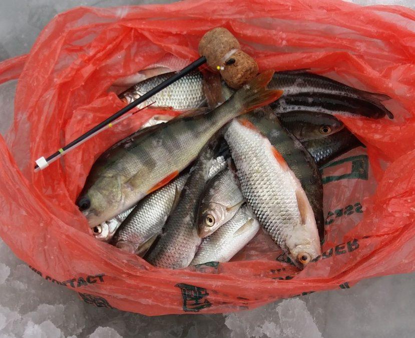 Рыбалку по неокрепшему льду в Кемерове сняли на видео
