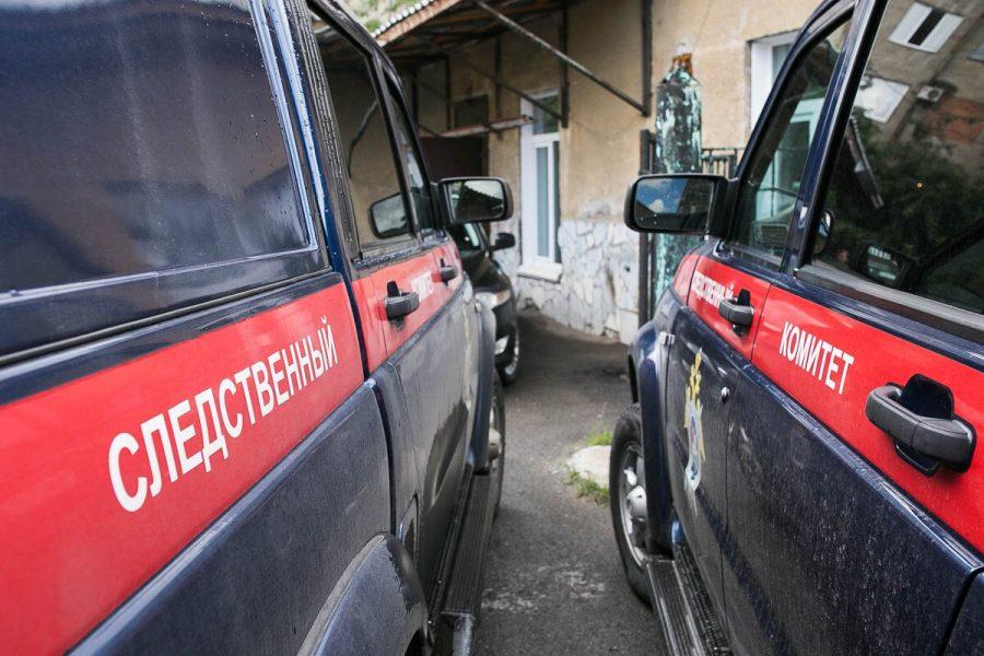 Подозреваемому в изнасиловании 8-летней кемеровчанки предъявили обвинение
