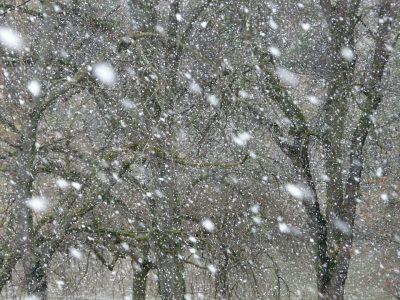 МЧС предупреждает кузбассовцев о гололёде, метелях и сильном ветре