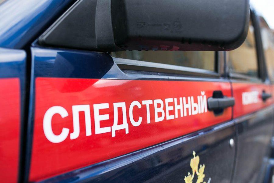 СК расследует дело по факту смерти девочки во время прогулки в детском саду Москвы