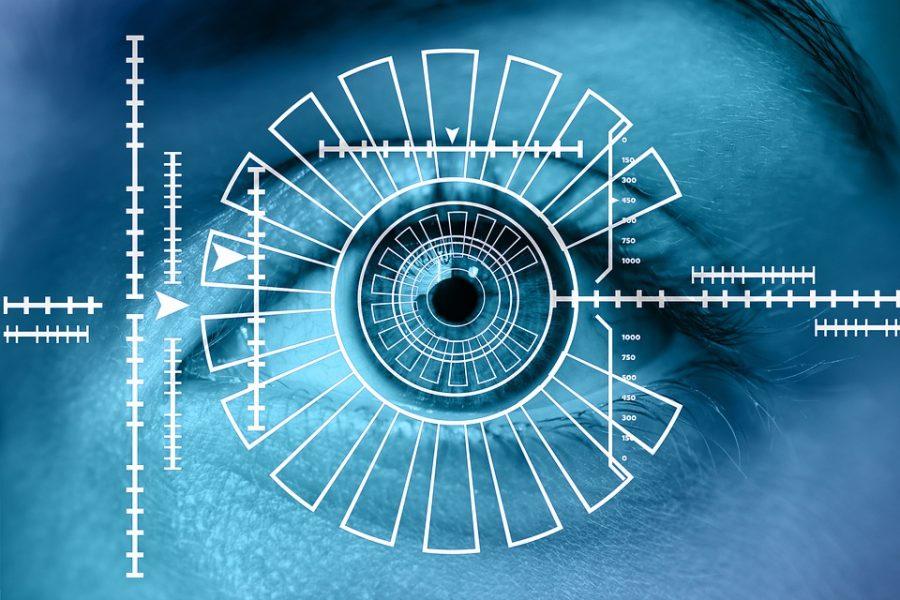 Биометрическую систему идентификации личности запустят в Российской Федерации  сиюля