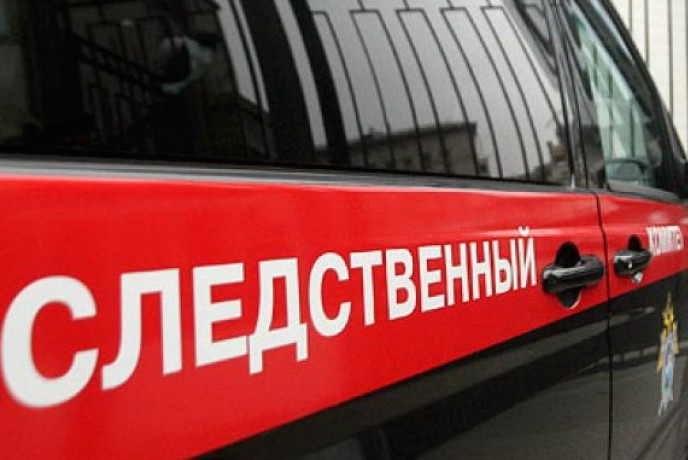 СК: возбуждено уголовное дело по факту похищения 3-летнего ребёнка из России в Вене